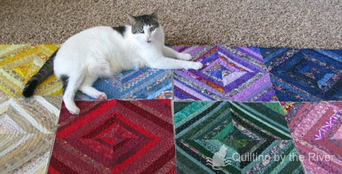 Cat on a string quilt