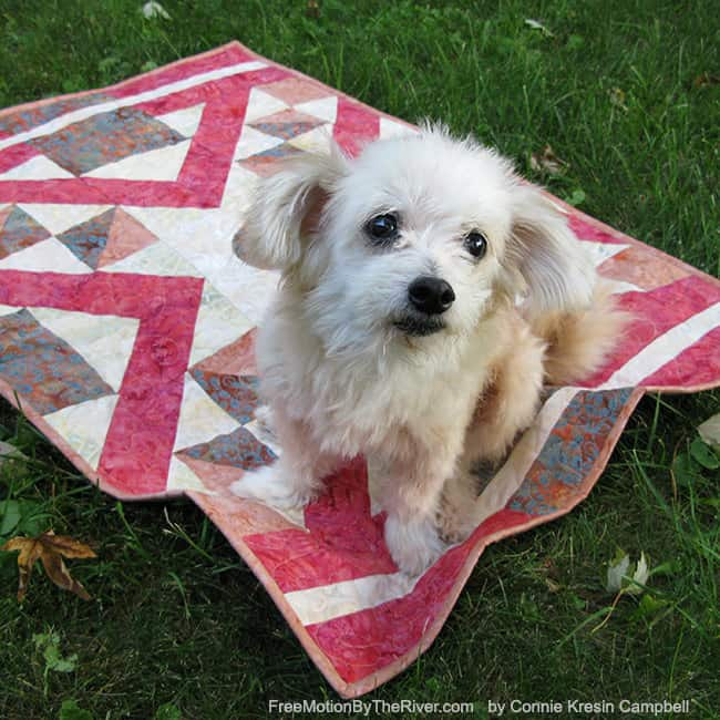 Indian Sunset quilt with little Sadie on it