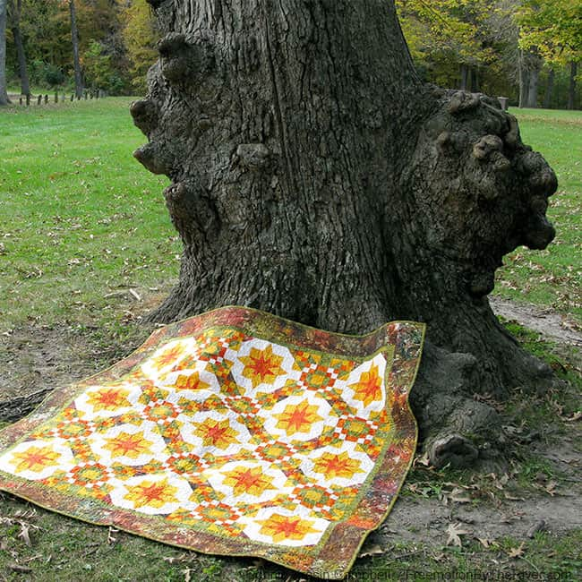 Golden Sunset Quilt on a Bur Oak tree