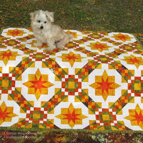Golden Sunset quilt with Sadie sitting on it