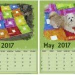 Free May Printable Calendars