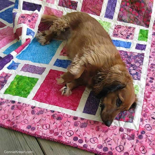 Tasha on quilted Scattered quilt